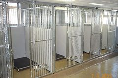 Kennels Dierenpension Marknesse